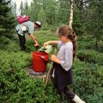 Naturlig egenvård och friluftsliv