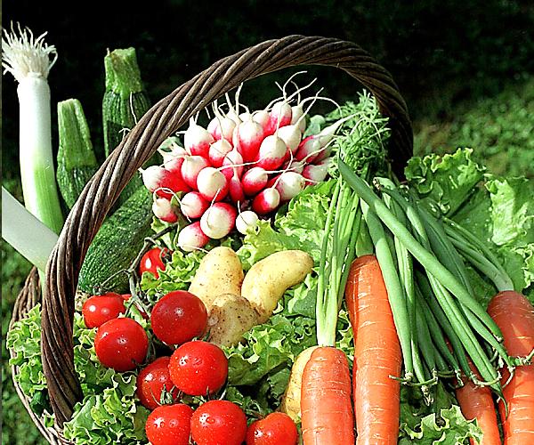 Egenvård, kost och  motion